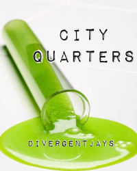 City Quarters (Based On Divergent)