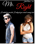 Mr. Right |Niall Horan|
