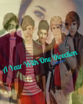 A Year with one direction