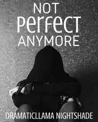 Not Perfect Anymore [Competition Lyrics]