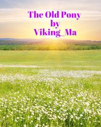 The Old Pony