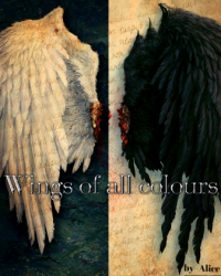 Wings of all colours