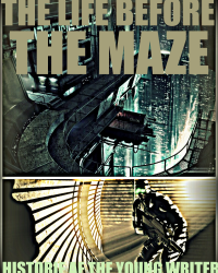 The life before the maze
