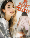 Mr. Heartbreaker | Harry Styles
