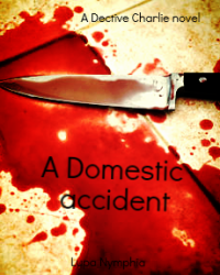 a domestic accident