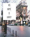 His name is Harry - styles