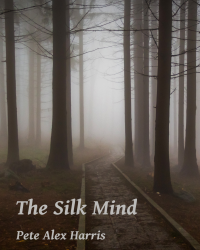 The Silk Mind