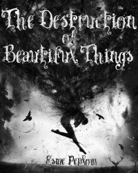The Destruction of Beautiful Things