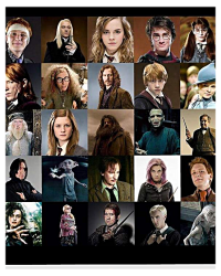 The Importance In Harry Potter