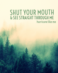 shut your mouth & see straight through me