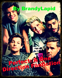 Perfect: A One Direction Fanfiction
