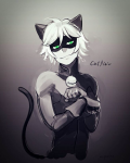 My kitty//A Chat noir fanfiction
