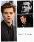 Sweet Creature • Harry Styles fanfiction