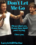 Don't Let Me Go - Larry Stylinson