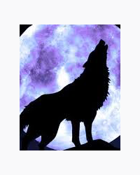 The Wolves Of Silverwood Backstories