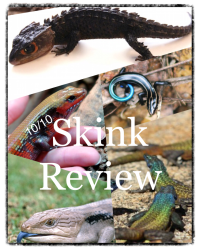 10/10 Skink Review