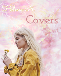 Mine covers