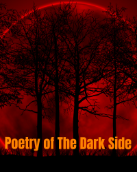 Poetry Of The Dark Side