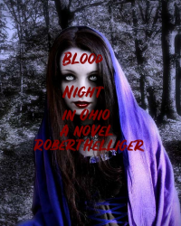 Blood Night in Ohio A novel
