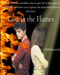 Lost in the Flames