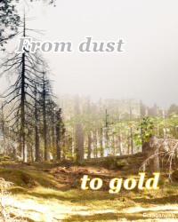 From dust to gold