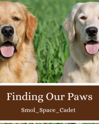 Finding Our Paws
