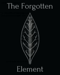 The Forgotten Element - Book 1 The Stone and The Eye
