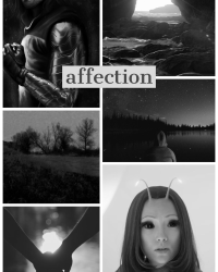 Affection (A Bucky Barnes Fanfic)