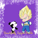 Beautifully Saiyan Panda